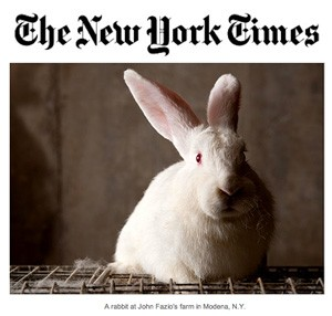 Press_NYTimes